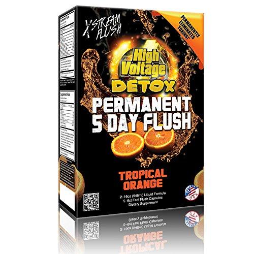 High Voltage Permanent 5 Day Flush Tropical Orange