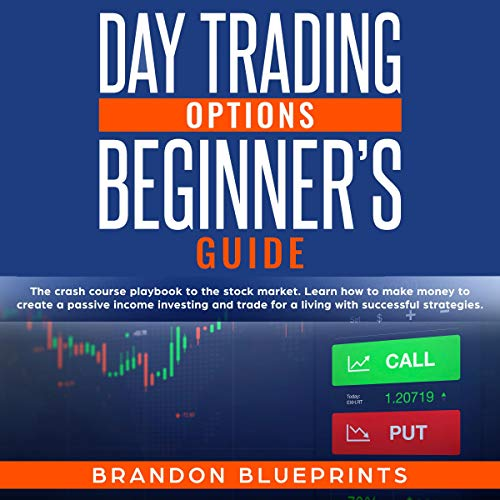 Day Trading Options Beginners Guide cover art