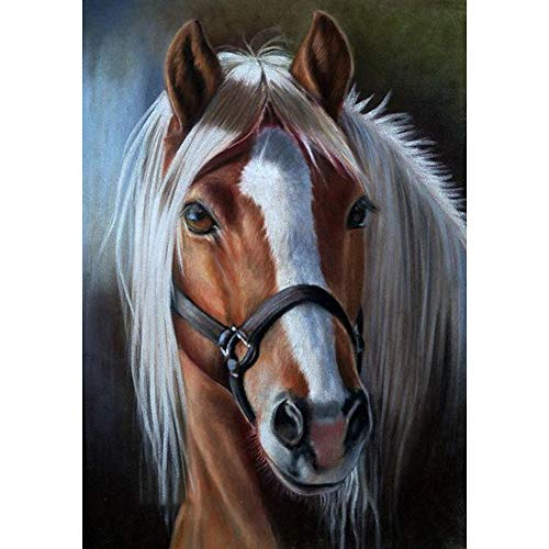 MXJSUA DIY Diamond Painting for Adult Full Square Drill Paint with Diamonds Kits 5D Art for Wall Decor Horse 40x50cm/16x20inch