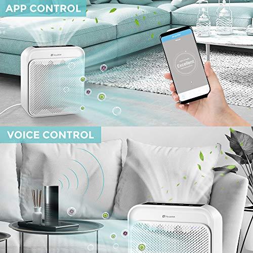 Houzetek Purificador de Aire Inteligente, control de voz con Alexa