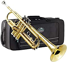 Eastrock Gold Trumpet Brass Standard Bb Trumpet Set for Beginnner, Student with Hard Case, Gloves, 7C Mouthpiece, Trumpet Cleaning Kit-Lacquer Gold