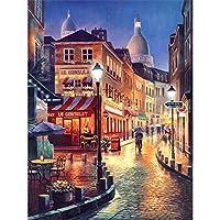 WEIFENGX油絵 数字キットによる絵画 塗り絵 大人 手塗り DIY絵 デジタル油絵 フレームレス 40x50cm - シティナイトビュー