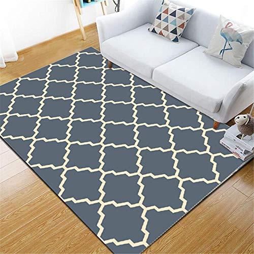 DJHWWD tapijten wateropnames ademend tapijten donkerblauwe golf en vierkant antislip tapijt van de geometrische woonkamer onderhoudsvriendelijk vloermatten