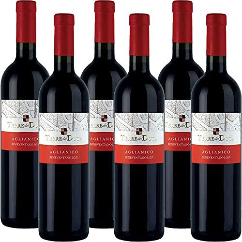 Aglianico del Beneventano Igt | Terre del Duca | Vino Rosso della Campania | 6 Bottiglie 75Cl | Idea Regalo