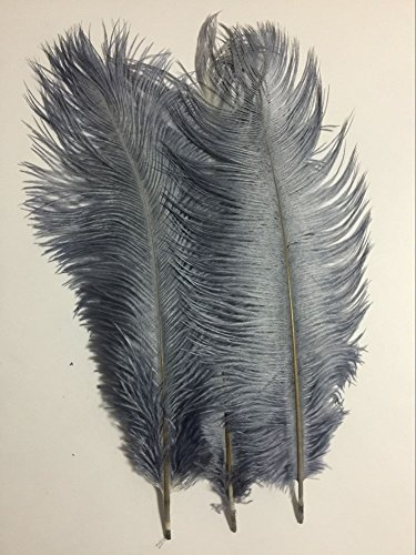 """KOLIGHT20pcs Ostrich Feather Gray 12""""-14"""" Natural Feathers Wedding, Party ,Home ,Hairs Decoration"""