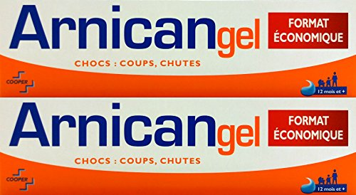 Arnican Gel Format Economique 100g Lot de 2
