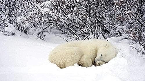 AMTTGOYY pussel för vuxna 1000-bitars sovande björn - barnpussel leksaker pedagogiskt spel