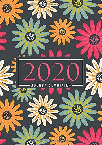 Agenda semainier 2020: Du 1er janvier 2020 au 31 décembre 2020 : aperçu hebdomadaire et mensuel, journal, planificateur & organiseur : Fleurs roses jaunes et vertes 038-1