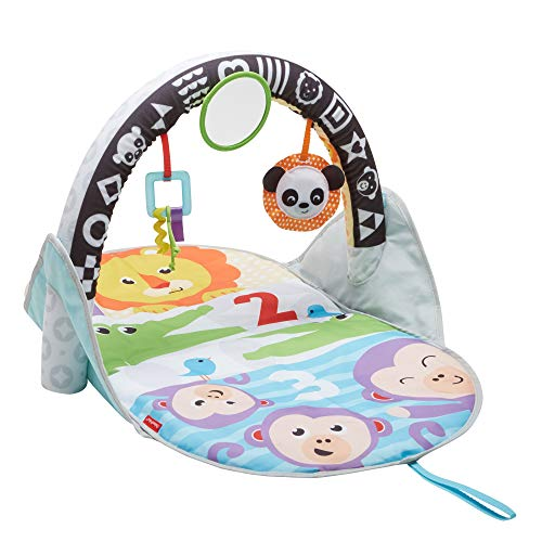 Fisher-Price 2-in-1 Flip and Fun Activity Gym, Baby Play Mat with Arch