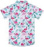 Junior Boys Flamingos Graphic Shitrts Hawaiian Funny Beach Button Down Dress Shirts Novelty Tops Casual for Tropical Themed Party 5-6T