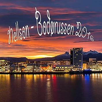Bodørussen 2016