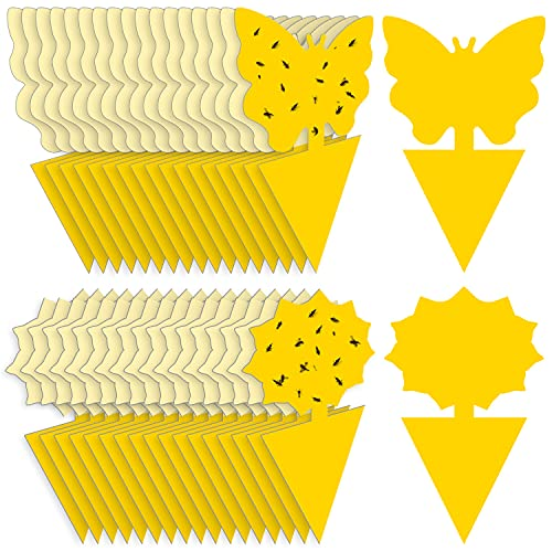 Mosqueda Fruit Fly Traps Fungus Gnat Traps Yellow Sticky Bug Traps 36 Pack Non-Toxic and Odorless for Indoor Outdoor Use Protect The Plant
