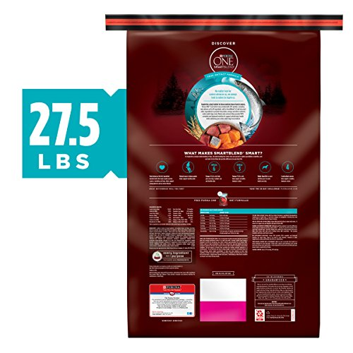 Dog | Purina ONE High Protein Natural Dry Dog Food, SmartBlend True Instinct With Real Salmon & Tuna – 27.5 lb. Bag, Gym exercise ab workouts - shap2.com