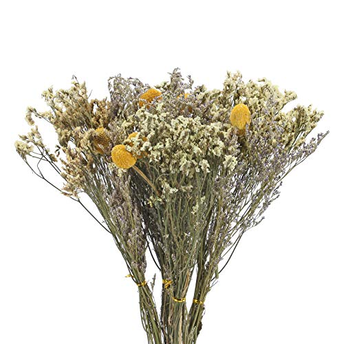 Natural: El ramo de flores secas naturales conserva el aroma belga original, sin ningún tratamiento químico, sin aditivos, y no hay necesidad de preocuparse por la exposición al sol al usarlo. Combinación perfecta: la bola de billy seca es famosa por...