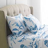 Pinzon Signature 190-Gram 100% Cotton Heavyweight Velvet Flannel Bed Sheet Set, Queen,...