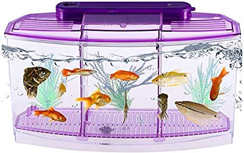 Desktop Aquarium zelfreinigende ecologische goudvis tank rechthoekig luik Place zaailingen aquaria,Purple