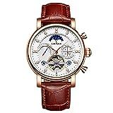 ANN KINYUED Automatische Mechanische Uhr, Hohle Mechanische Uhr Original-Mechanische Sport Kratzfestem Glas Fashion Diamond Star Herrenuhr,Gold,Brown