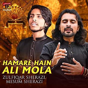 Hamare Hain Ali Mola - Single