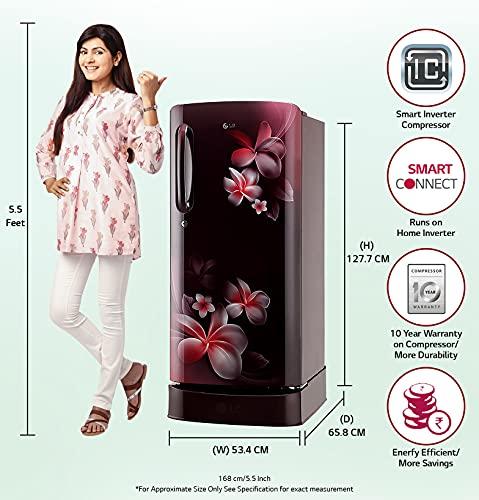 LG 190L 5 Star Direct-Cool Smart Inverter Single Door Refrigerator (GL-D201ASPZ, Scarlet Plumeria, Base stand with drawer) 2