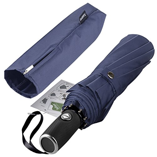 Windproof Travel Umbrella, 10 Ribs Lightweight Umbrella for Women and Men Teflon Coating with Auto Open Close Button, Zipper Pouch (Blue)