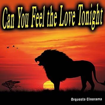 Can You Feel the Love Tonight - Single