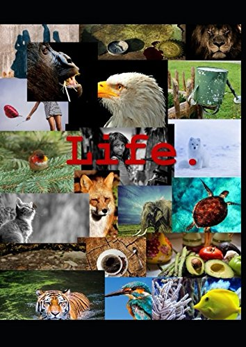 Life: Libreta Tumblr