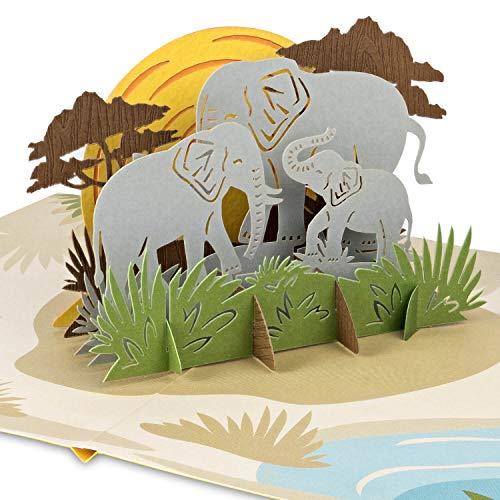 PaperCrush® Pop-Up Karte Elefanten - 3D...