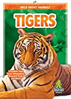 Tigers (Wild About Animals)