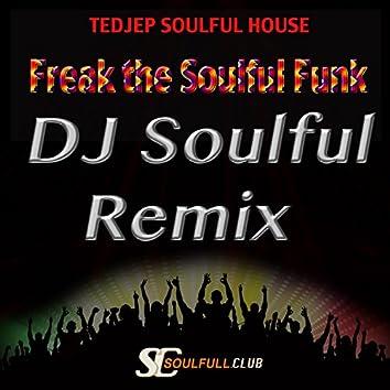 Freak the Soulful Funk (DJ Soulful Remix)