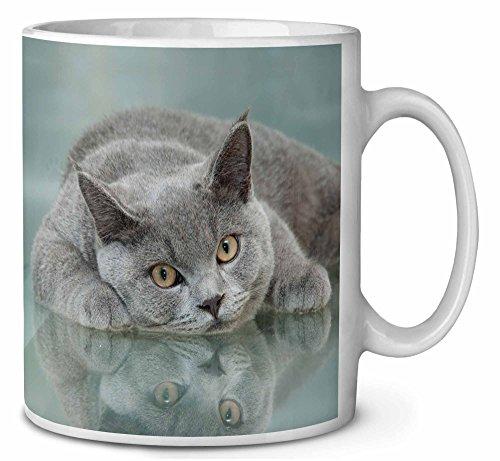 Britische blaue Katze mit auf Glas Kaffeetasse Geburtstag/Weihnachtsgeschenk