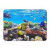 Alfombrillas Alfombras de baño Alfombrilla para Exteriores / Interiores Acuario Coral y Peces en el Mar Rojo Egipto Buceo Hurghada Bajo baño Decoración Alfombra Alfombra de baño