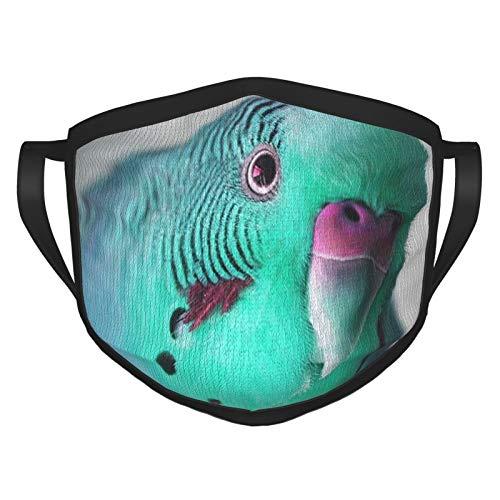 ZVEZVI Beautiful Blue And Green Budgie Adult Black Border Mask, Portable Face Protection,Bandana,Elastic Edge,Balaclava