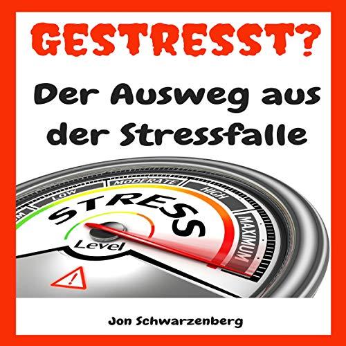 Gestresst?: Der Ausweg aus der Stressfalle [Stressed?: The Way Out of the Stress Trap] audiobook cover art