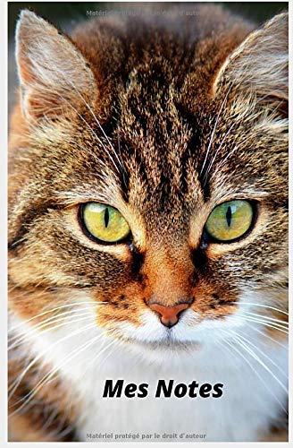 Carnet de Notes chat broché ligné: 13 X 20 cms