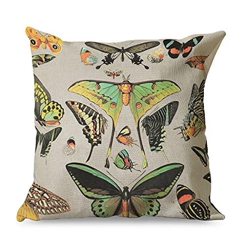 CCMugshop Funda de cojín vintage con estampado de mariposas, de algodón y lino, para regalos, color blanco, 45 x 45 cm