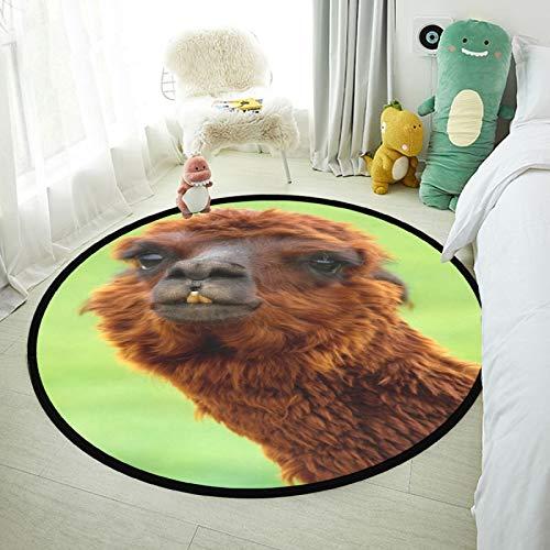 SunFay Alfombra de área redonda para bebé antideslizante de lujo para decoración del hogar cuarto dormitorio y sala de estar marrón Alpaca cabeza 80 x 80 cm