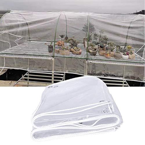 MAHFEI Lonas Impermeables Exterior, Tela Toldo con Ojales De Metal Al Aire Libre Cubierta Vegetal Mantener Caliente Antihielo PVC De 0,3 Mm Carpa para Camping (Color : Claro, Size : 3x6m)