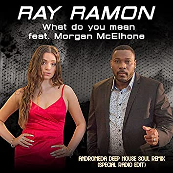 What do you mean (feat. Morgan McElhone) (Andromeda Deep House Soul Remix Special Radio Edit)