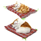 Coolayoung 2Pcs Sleeping Cat on Pad Doll Toy, Cute Mini Kitten on Pad with Meows Sounds Decor Hand Toy Gift for Kids Boys Girls