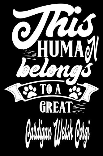 This Human Belongs to a great Cardigan Welsh Corgi: dog owner gifts personalized, funny, dog lover birthday gift, Cardigan Welsh Corgi gifts for women / men