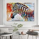 Schöne zebra wilde tier kunst poster leinwand malerei