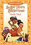 Terrible Terrel (Sugar Plum Ballerinas Book 4) brown sugars May, 2021