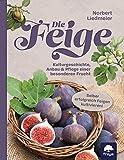 Die Feige: Kulturgeschichte, Anbau & Pflege einer besonderen Frucht