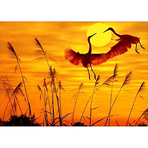 DIY 5D Diamond Painting, Crystal Rhinestone Embroidery Pictures Arts Craft for Home Wall Decor Crane in The Sunset 11.8 x 15.7