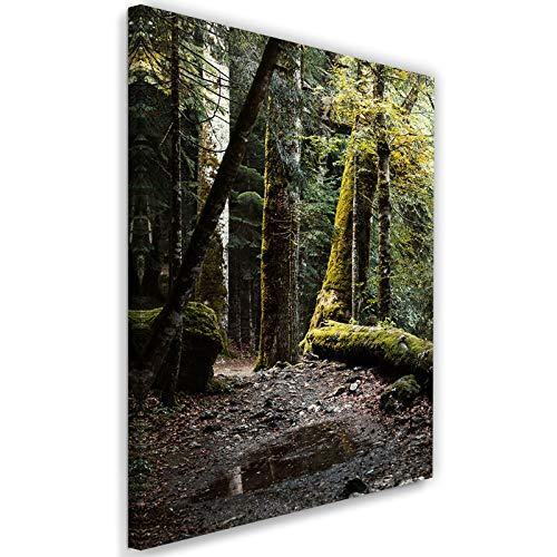 Cuadro en Lienzo Naturaleza Calidad fotografica Bosque Árboles Agua Verde 40x60 cm