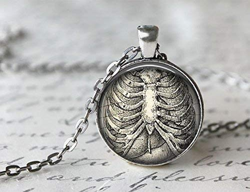 Jewellery Necklaces,Anatomical Ribcage Charm Necklaces,Jewellery Pendant,Glass Round Silver Pendant,Art Photo Jewelry,Glass Necklace