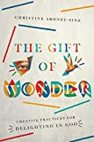 The Gift of Wonder: Creative Practices for Delighting in God