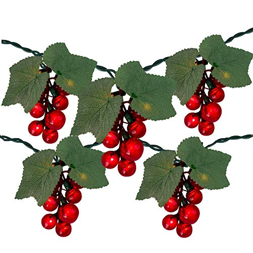5-Count Red Grape Cluster Outdoor Patio String Light Set - 6ft Green Wire
