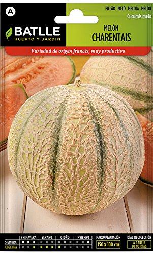 Batlle Gemüsesamen - Honigmelone Charentais (175 Samen)