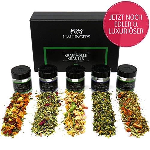 Hallingers 5er Tee-Geschenk-Set Kräutertee & Detox-Tee (40g) - Kraftvolle Kräuter (MiniDeluxe-Box) - zu Muttertag & Vatertag - Versand durch Amazon